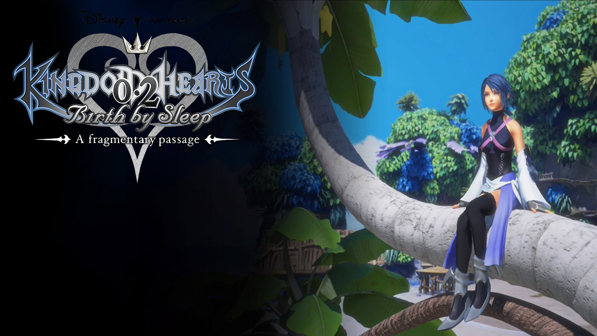 Kingdom Hearts Birth By Sleep Wallpapers 85 Background Pictures