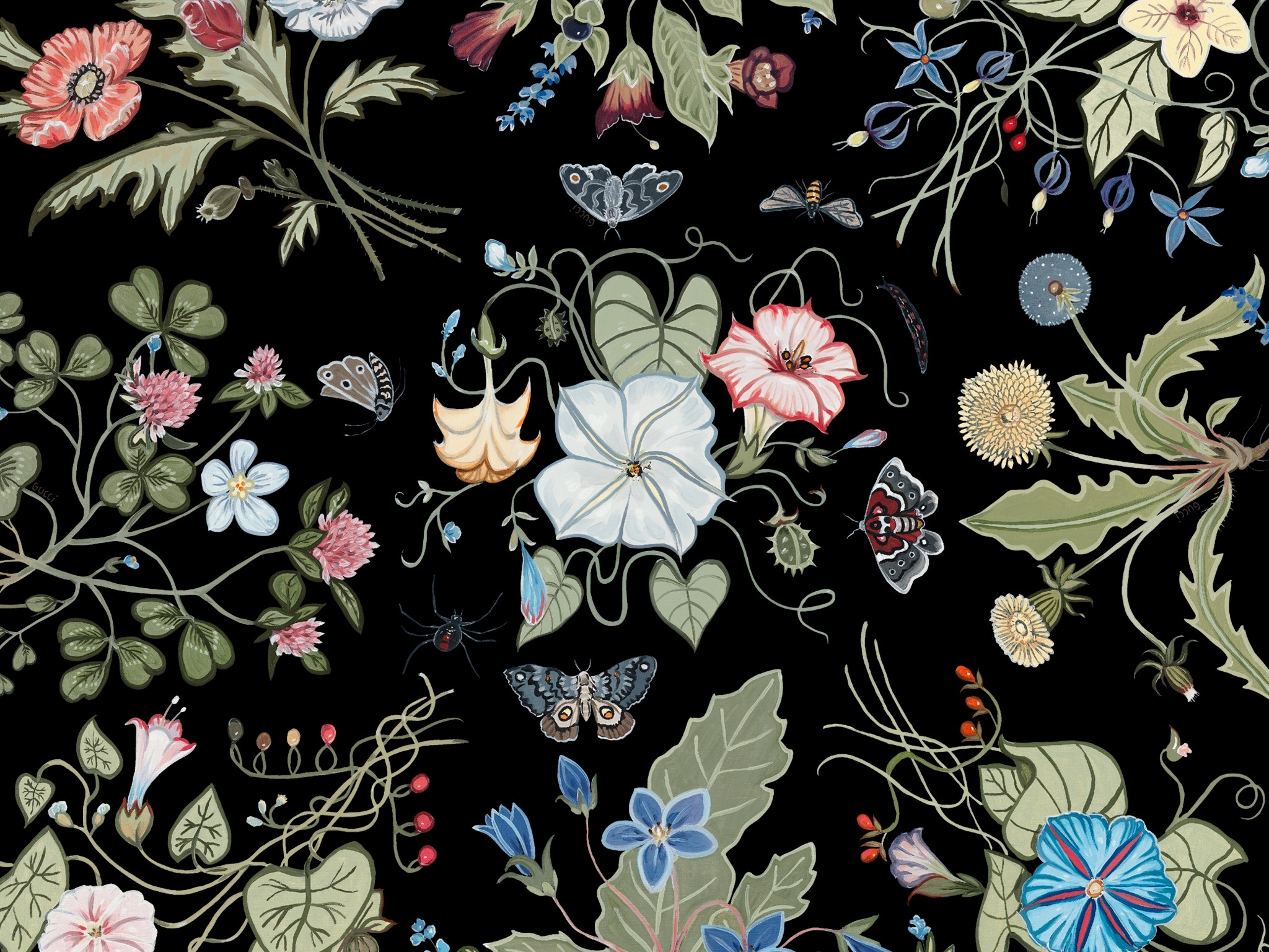 Gucci wallpapers 82 background pictures - Gucci desktop wallpaper ...