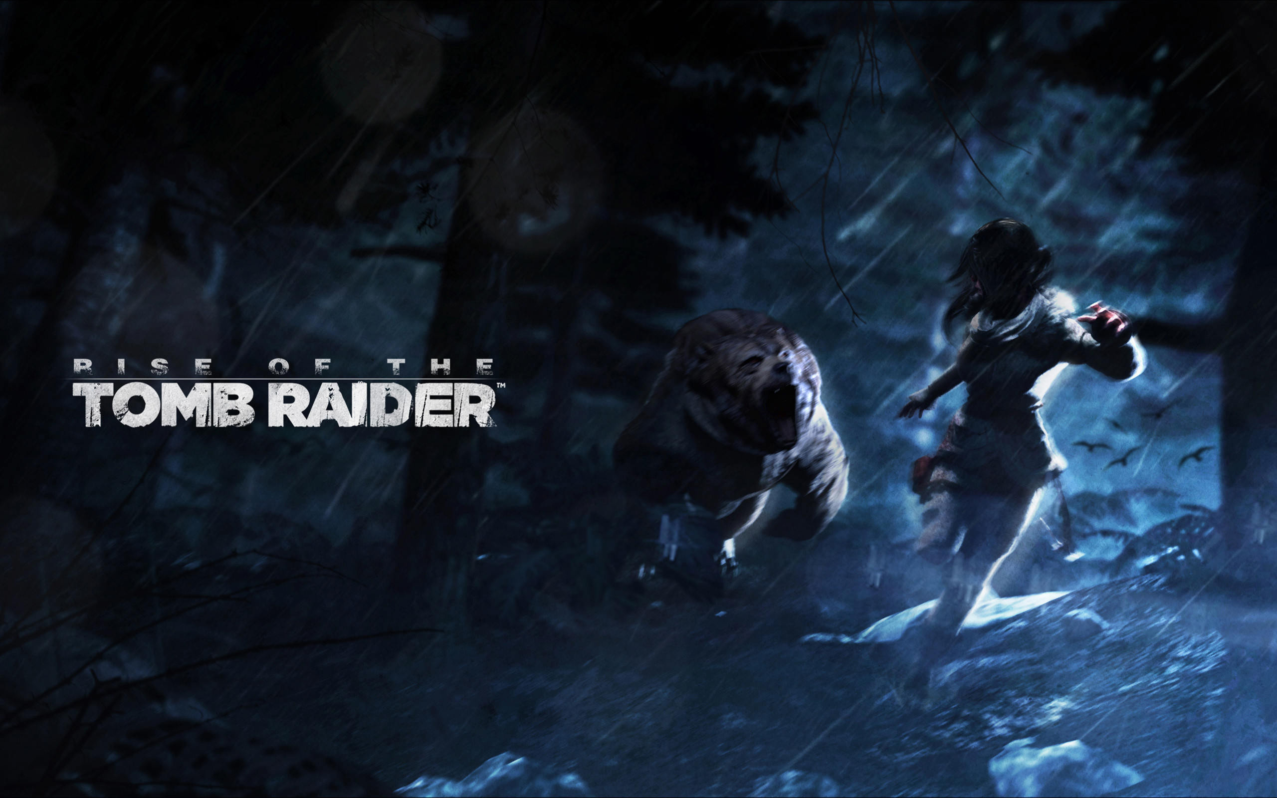 2880x1800 Tags Rise Tomb Raider 2015