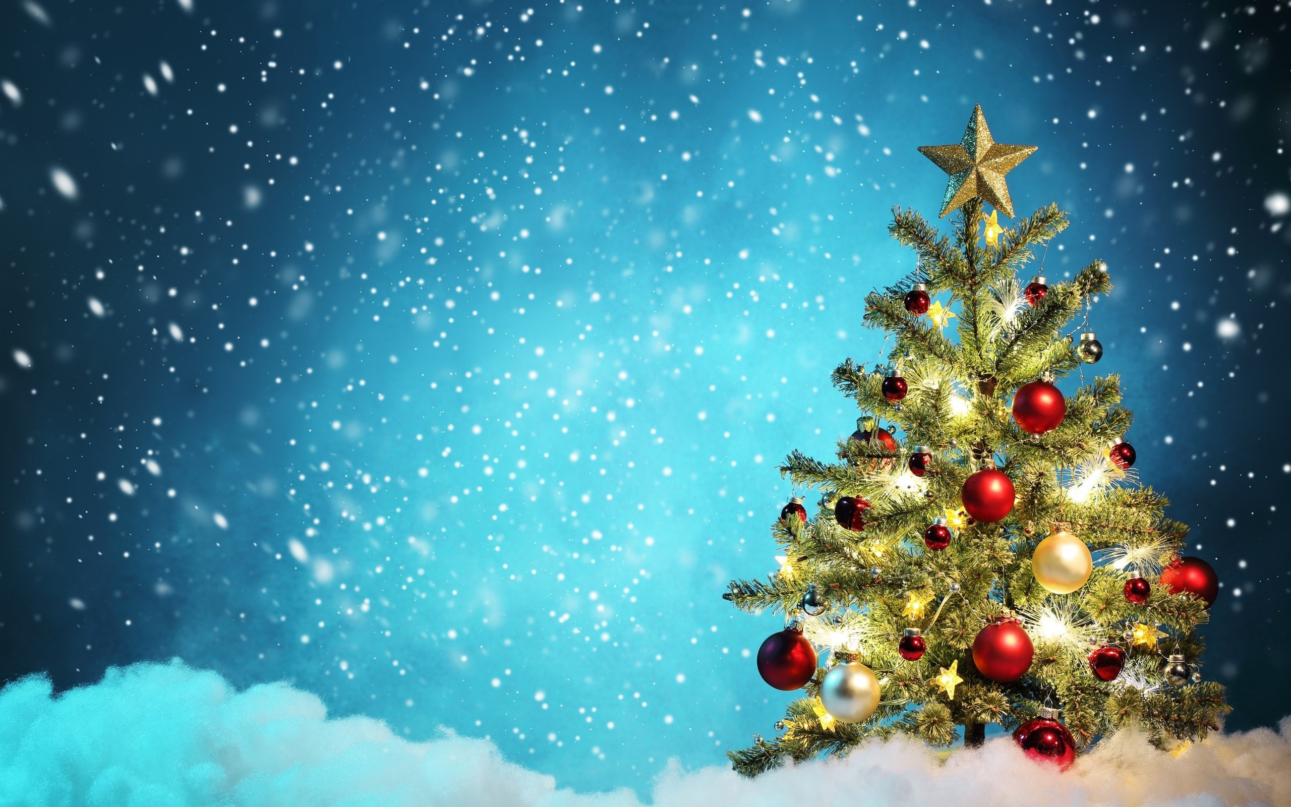 Christmas Tree Images Hd.Christmas Trees Wallpapers 82 Background Pictures