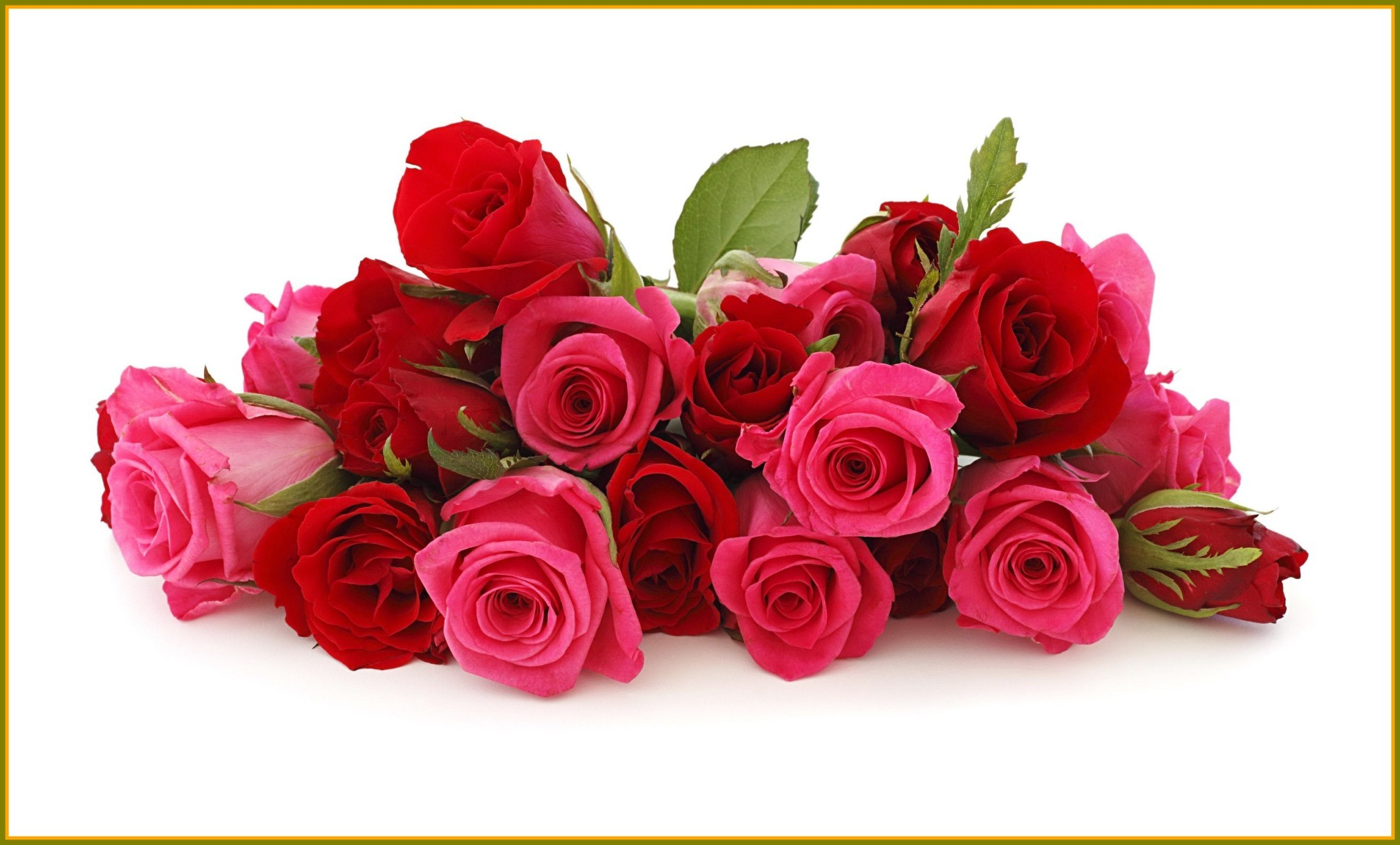 Love Flower Wallpapers 59 Background Pictures