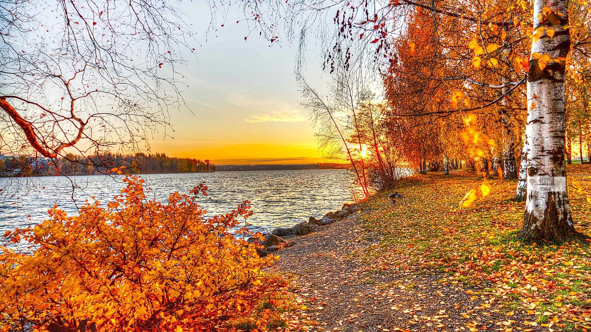 Beautiful Autumn Wallpapers 66 Background Pictures