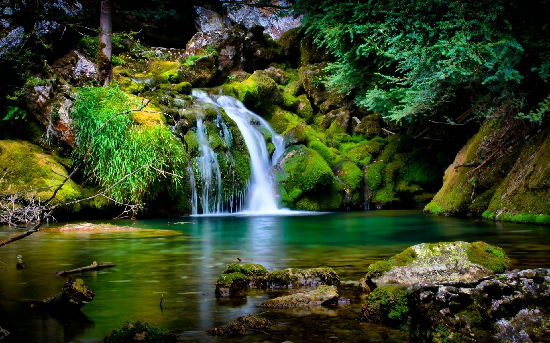 nature wallpapers for desktop (60+ background pictures)