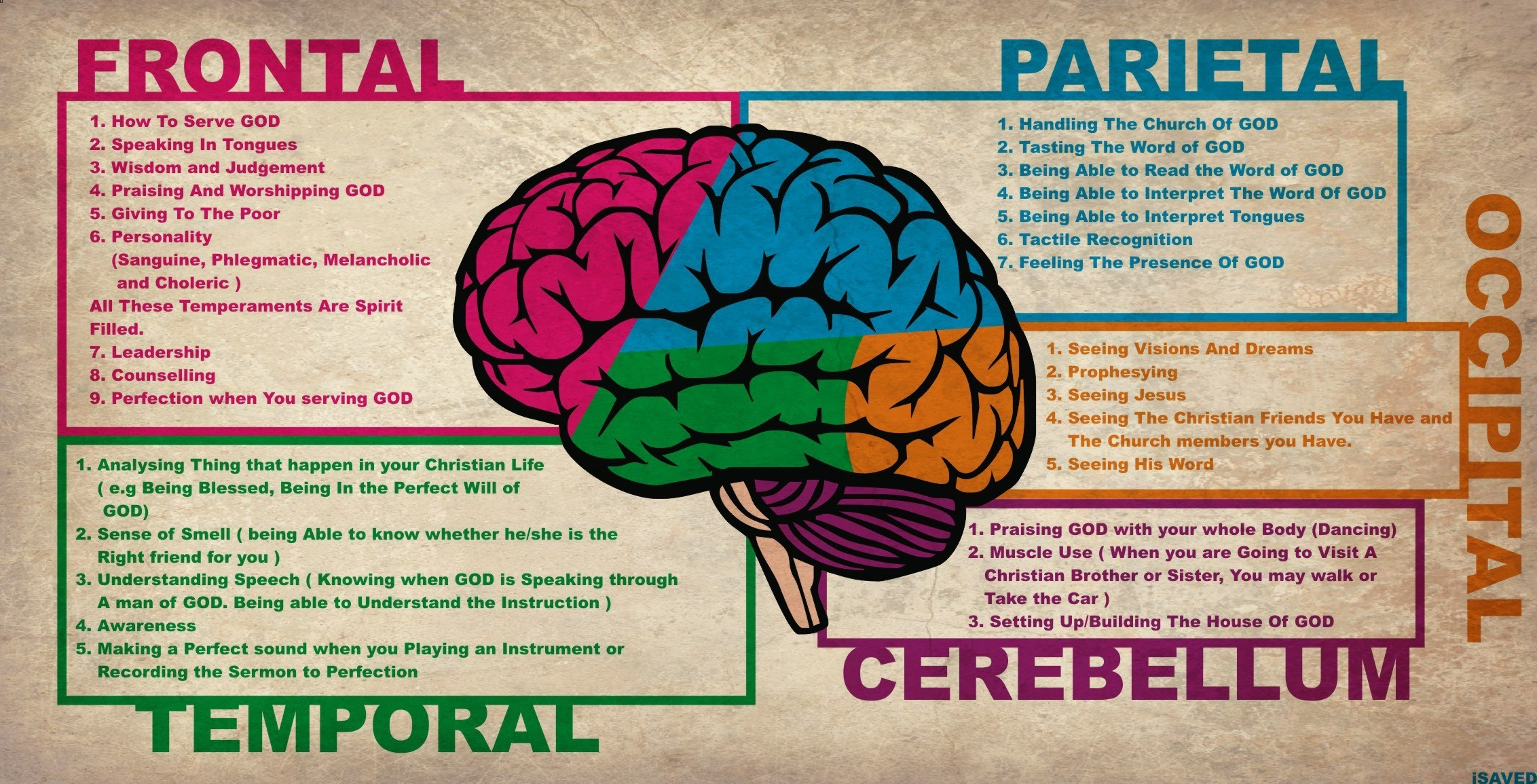 Brain diagram wallpaper wiring diagram services brain anatomy wallpapers 62 background pictures rh pavbca com brain diagram labeled with functions brain anatomy wallpaper ccuart Images