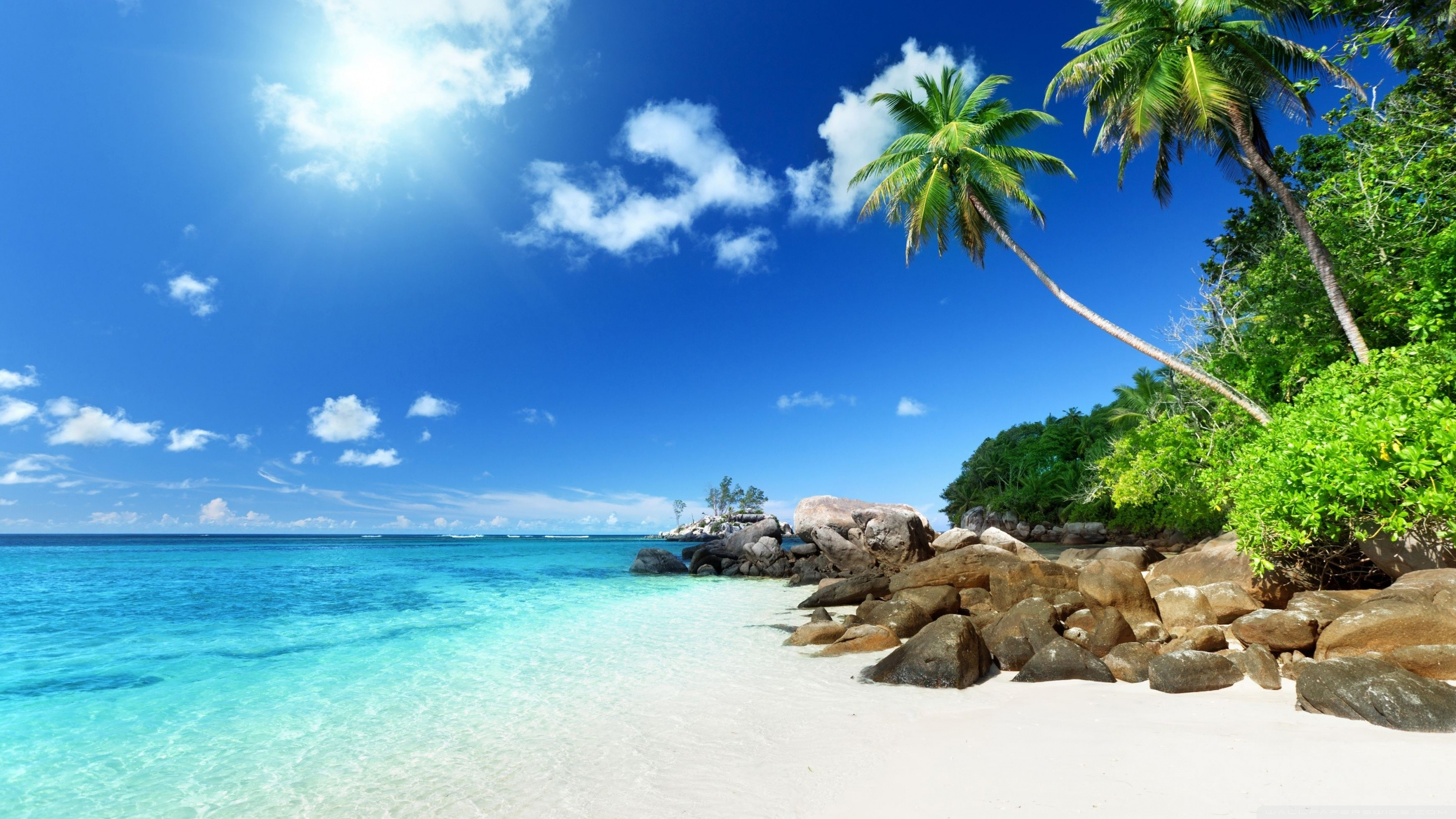 Hd Tropical Island Beach Paradise Wallpapers And Backgrounds: Paradise Beach Wallpapers (67+ Background Pictures