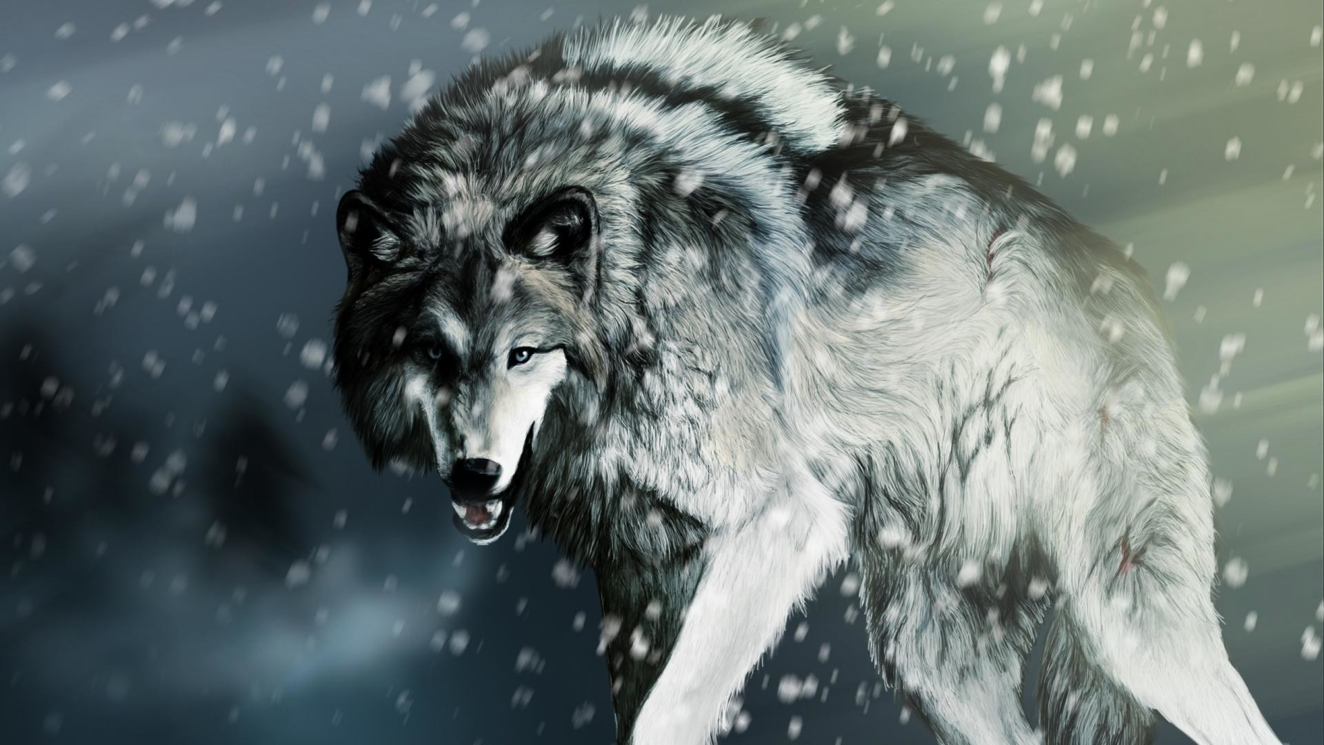 Lone Wolf Wallpapers 82 Background Pictures