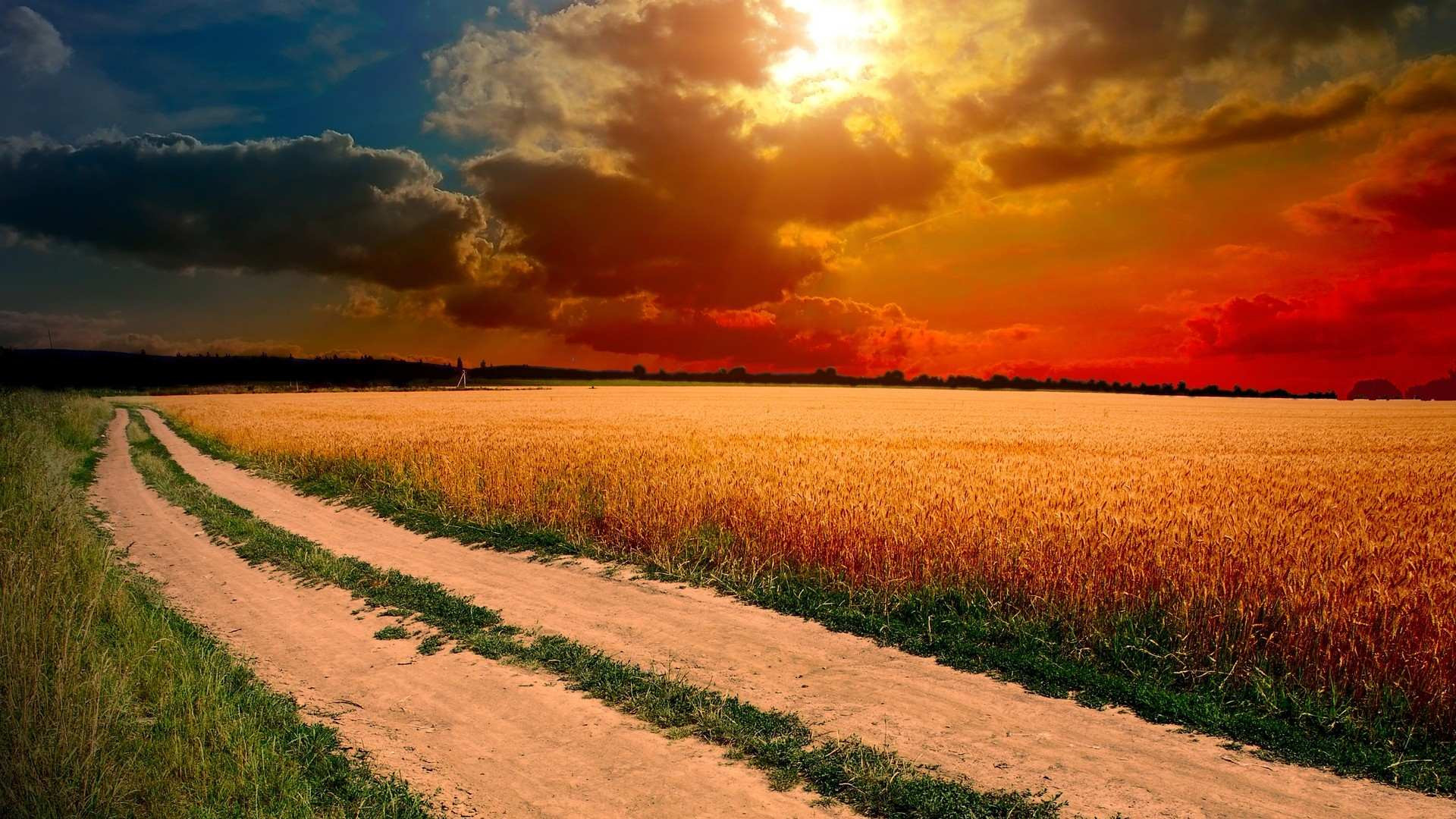 Beautiful Nature Wallpapers 73 Background Pictures