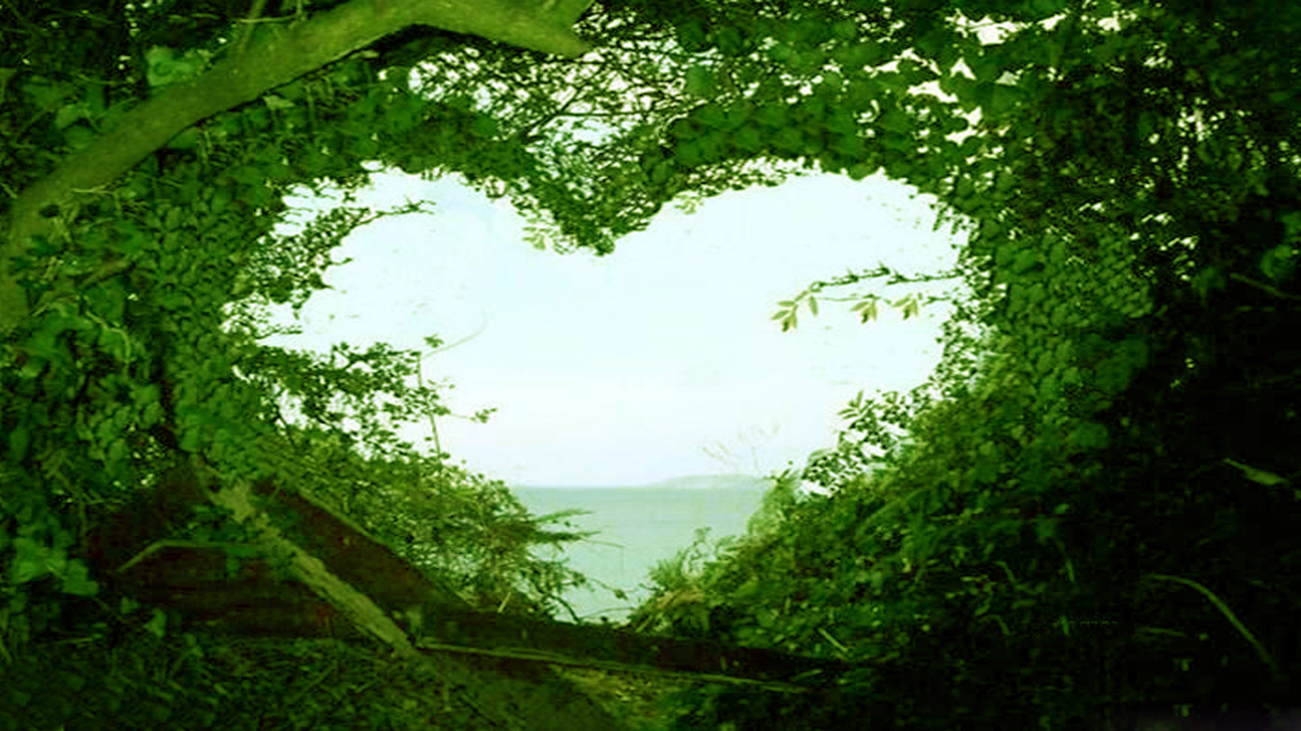 Love nature wallpapers 60 background pictures - Wallpaper stills ...