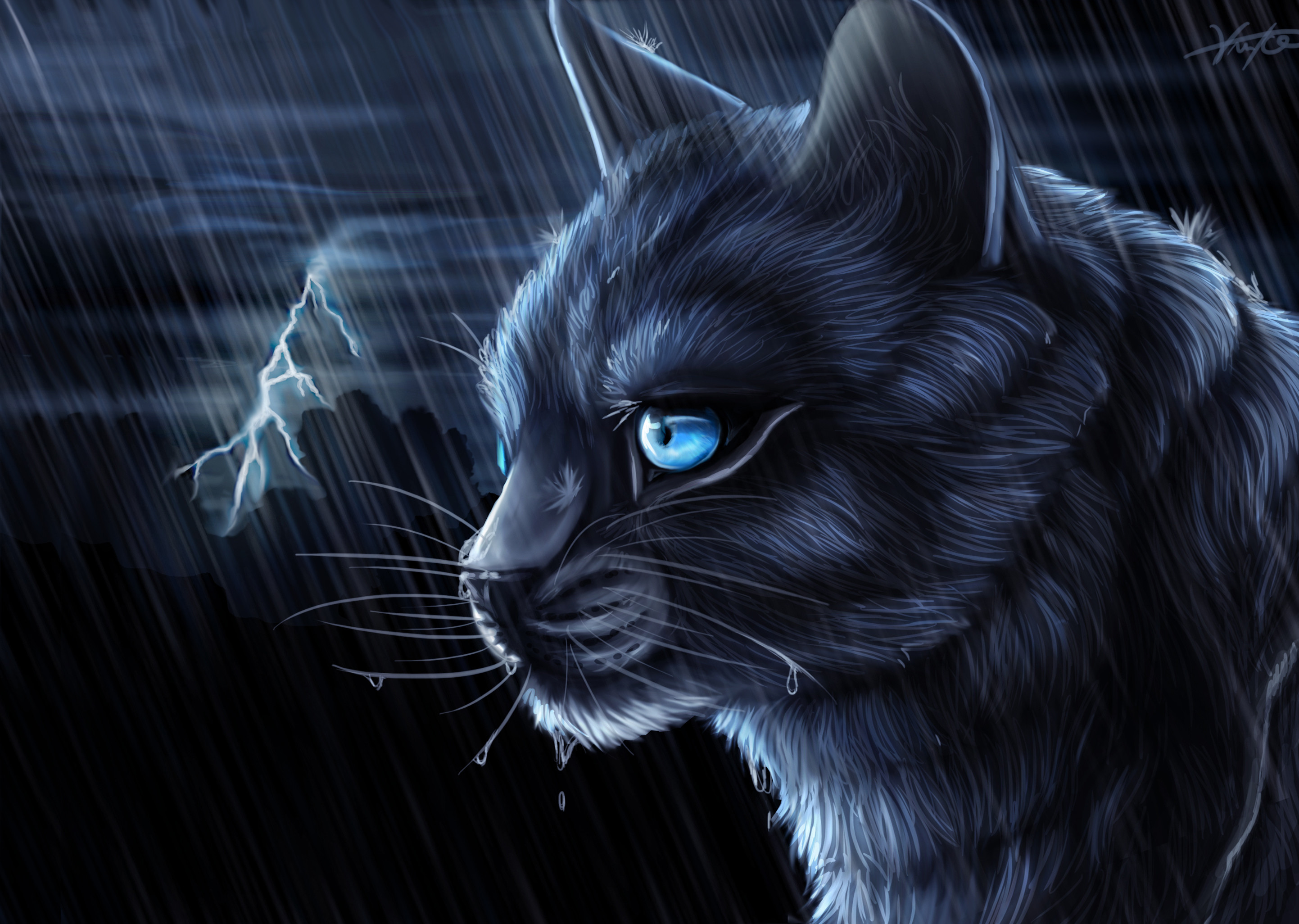 Warrior Cats Wallpapers Bluestar 67 Background Pictures