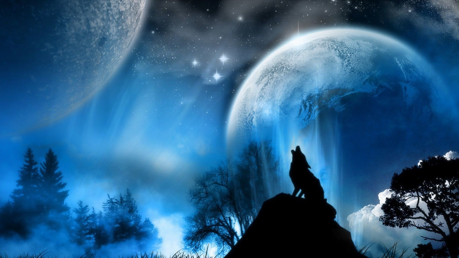 Wallpapers Wolves 73 Background Pictures
