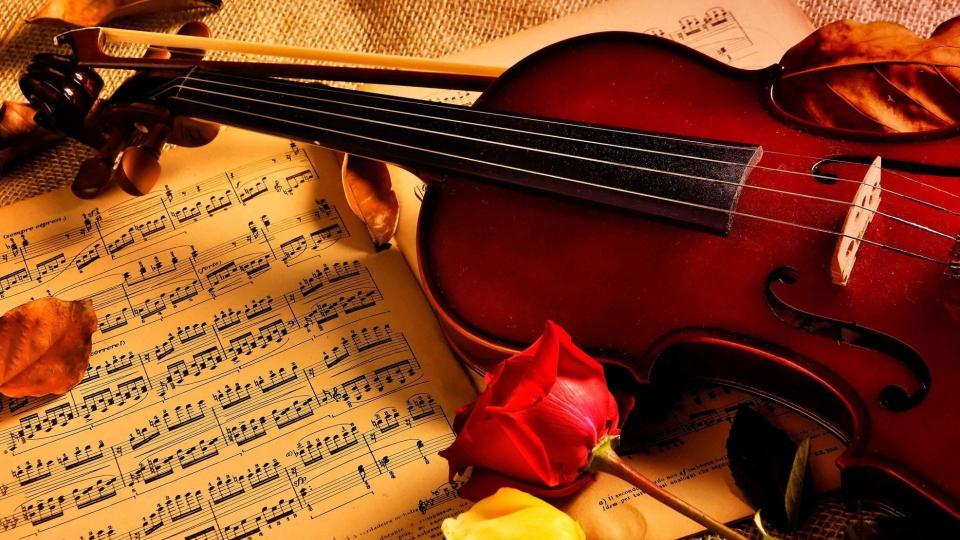 Classical Music Wallpapers 62 Background Pictures