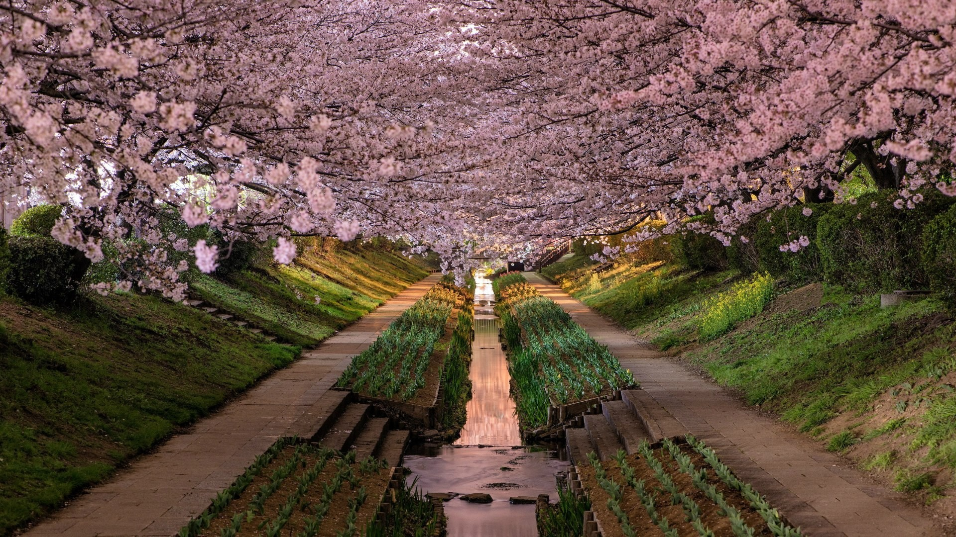 Japanese Landscape Wallpapers 72 Background Pictures