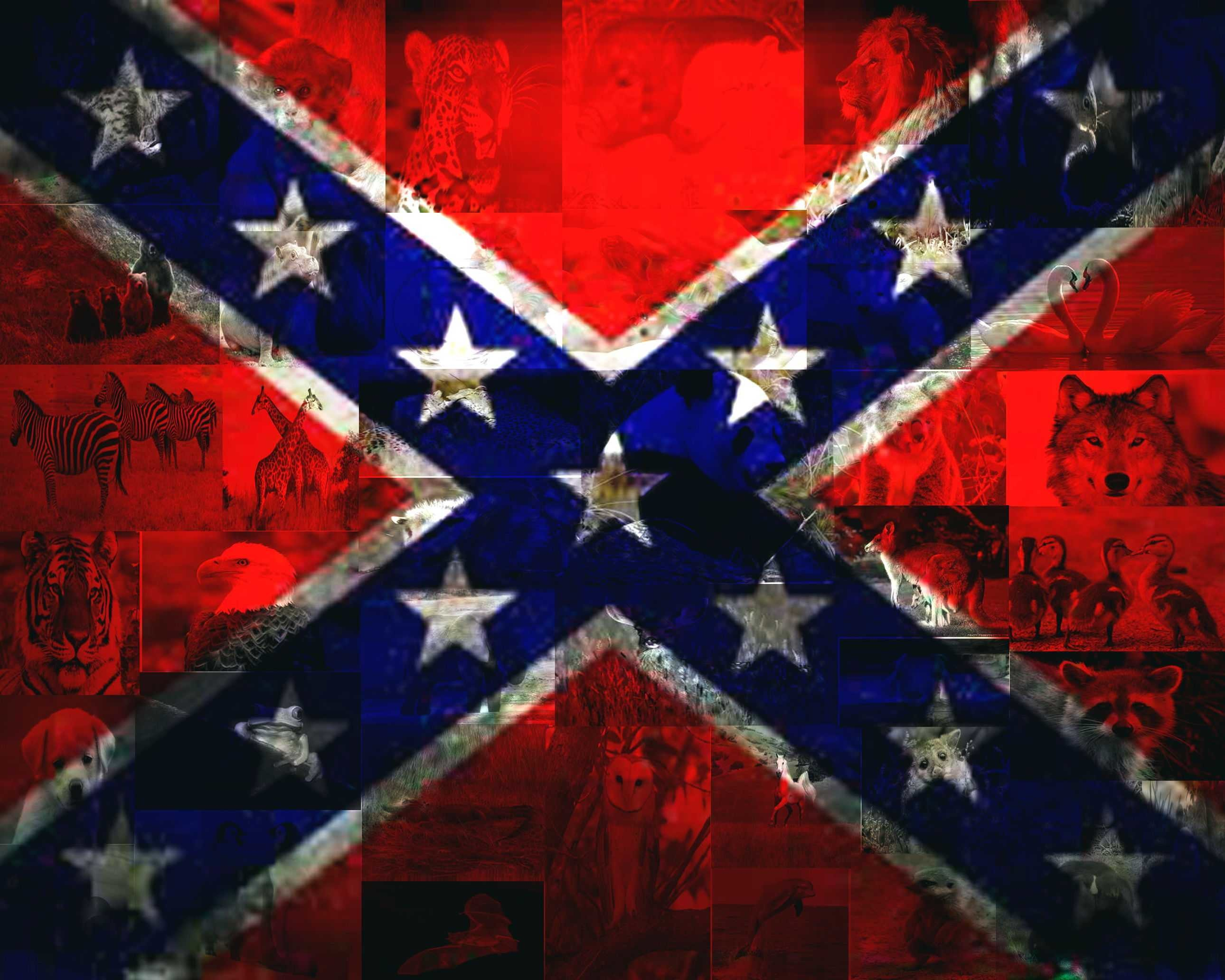 Rebel Flag Wallpapers 72 Background Pictures
