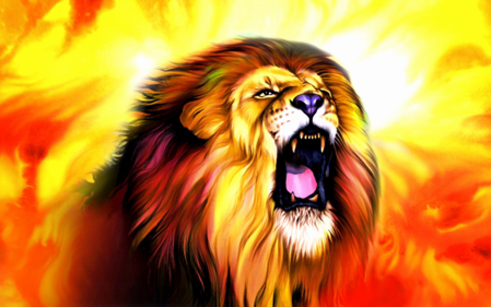 Lion Wallpapers 76 Background Pictures