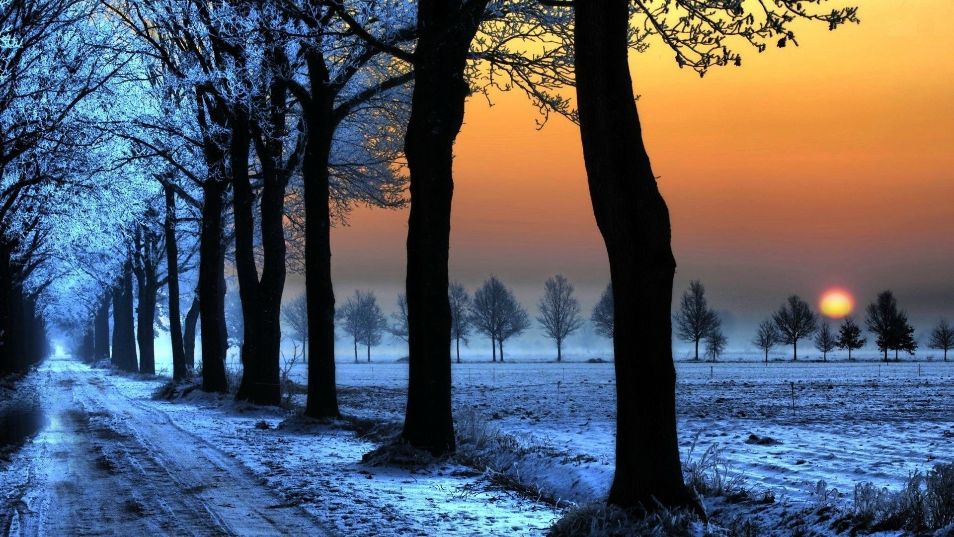 Wallpapers For Desktop Full Screen 74 Background Pictures