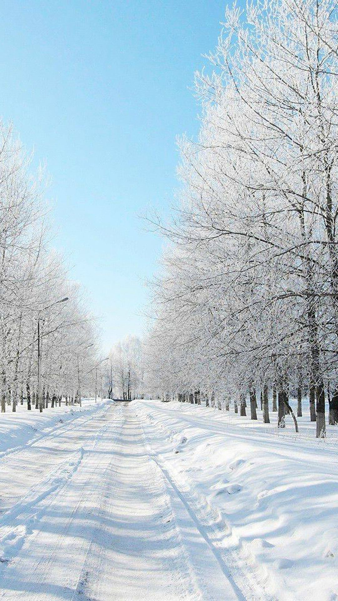 Winter Scenic Wallpapers on