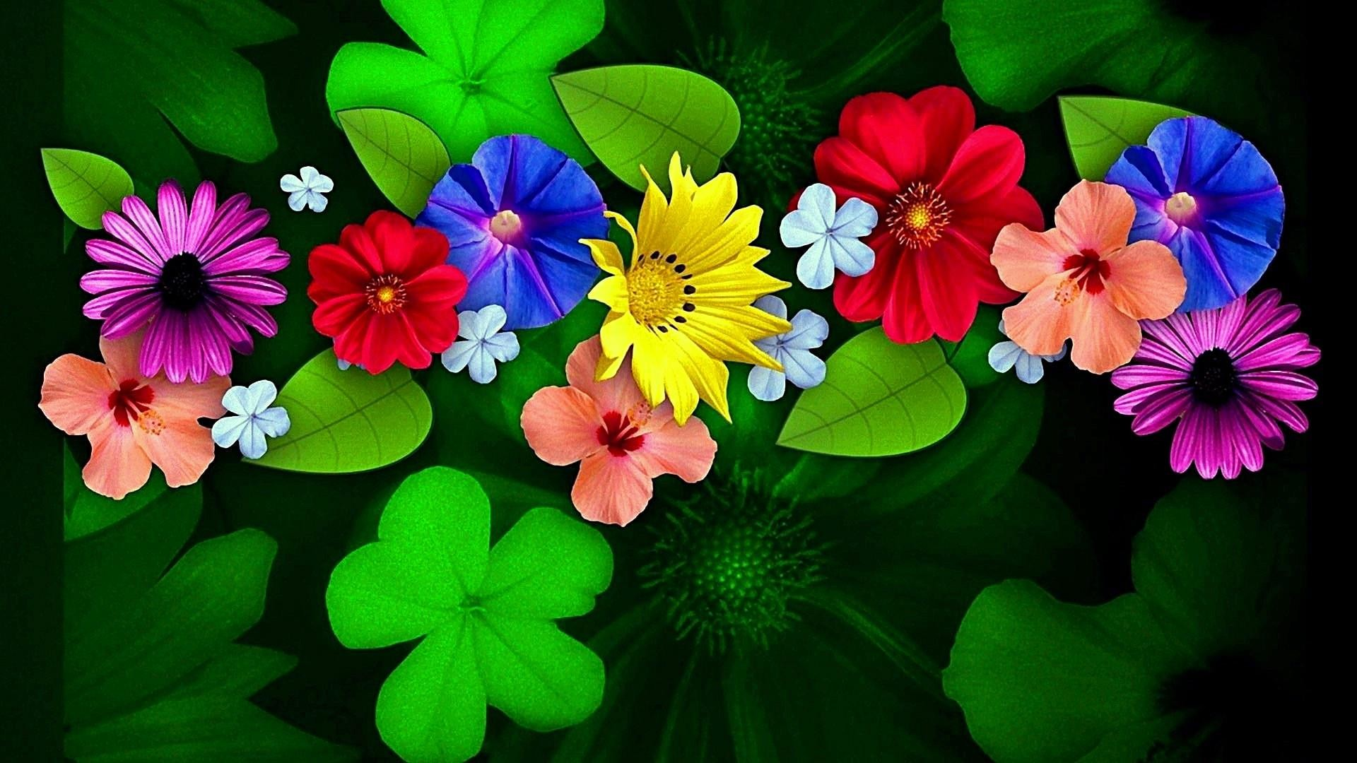 Colorful Flower Wallpapers (74+ background pictures)