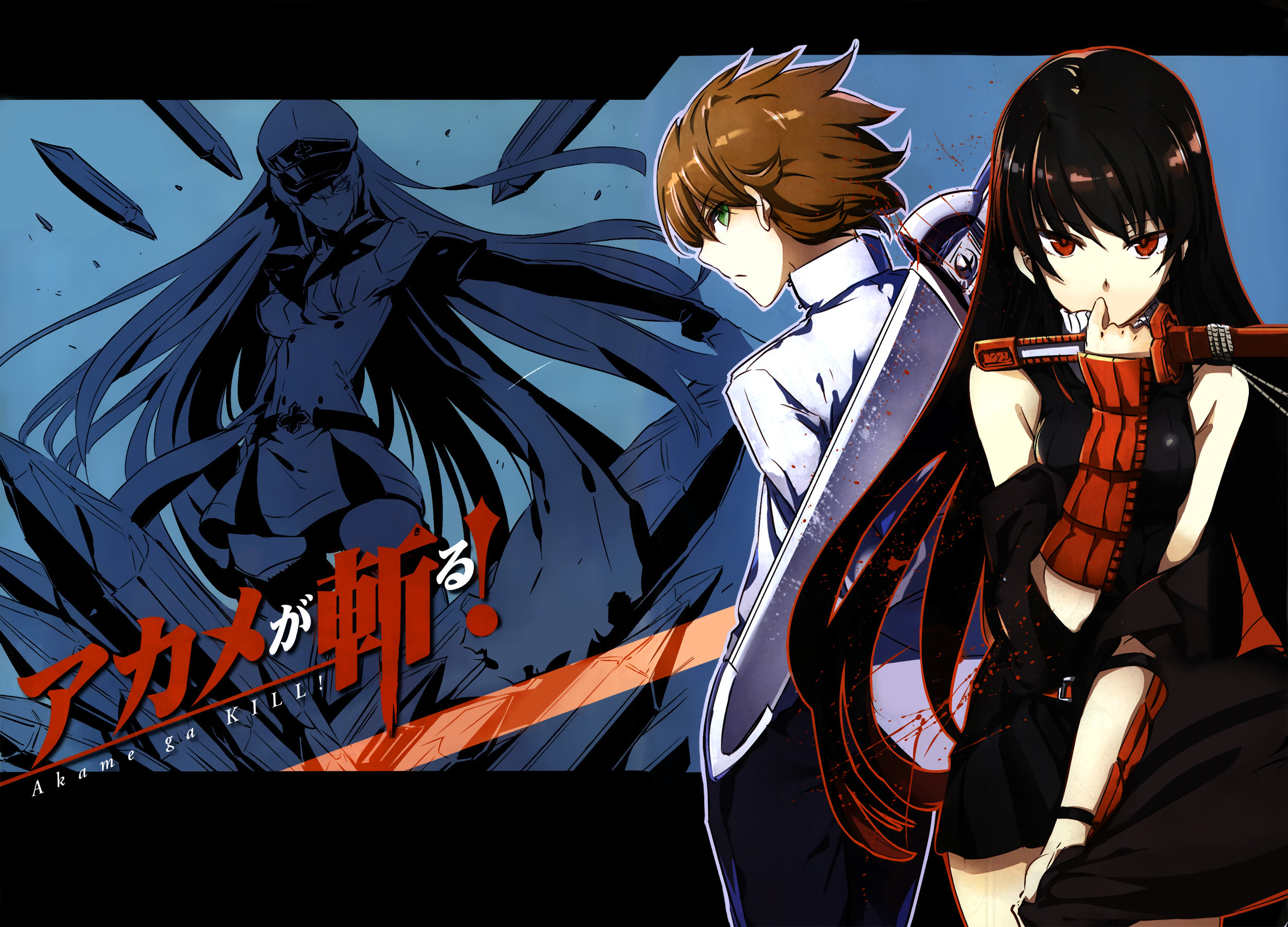 akame ga kill wallpaper iphone