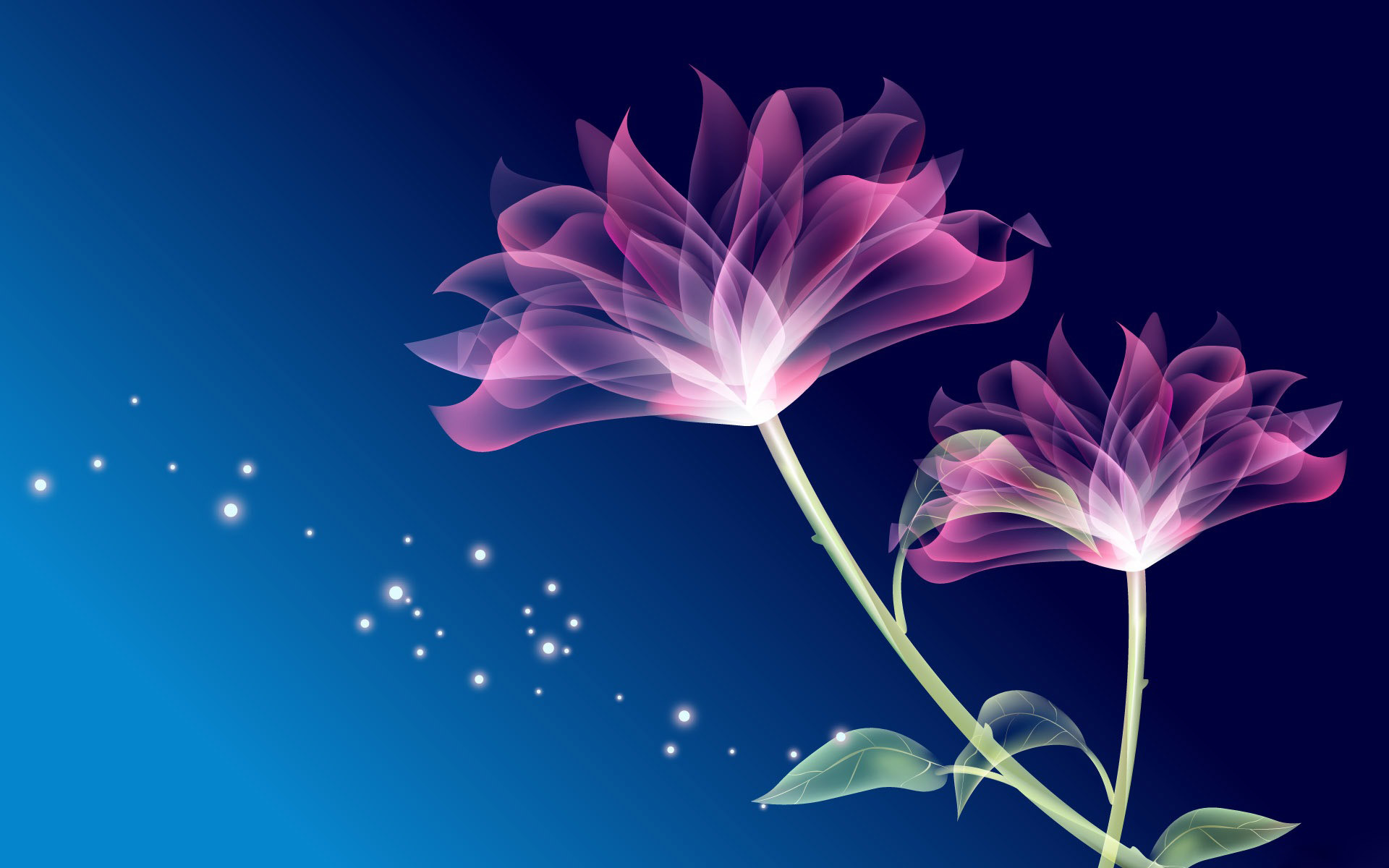 Beautiful Flower Wallpaper Images For