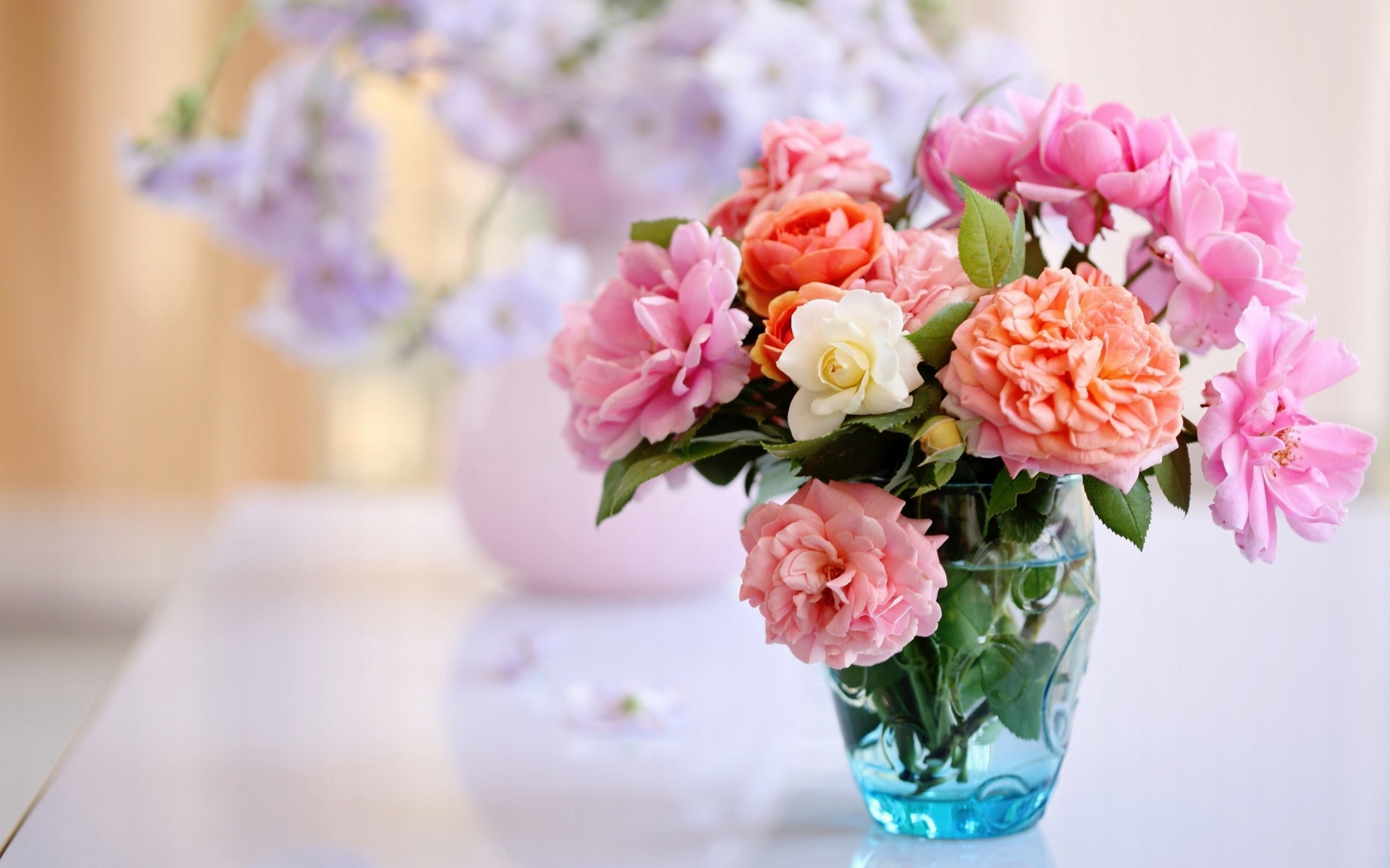 Beautiful Flowers Wallpapers 63 Background Pictures