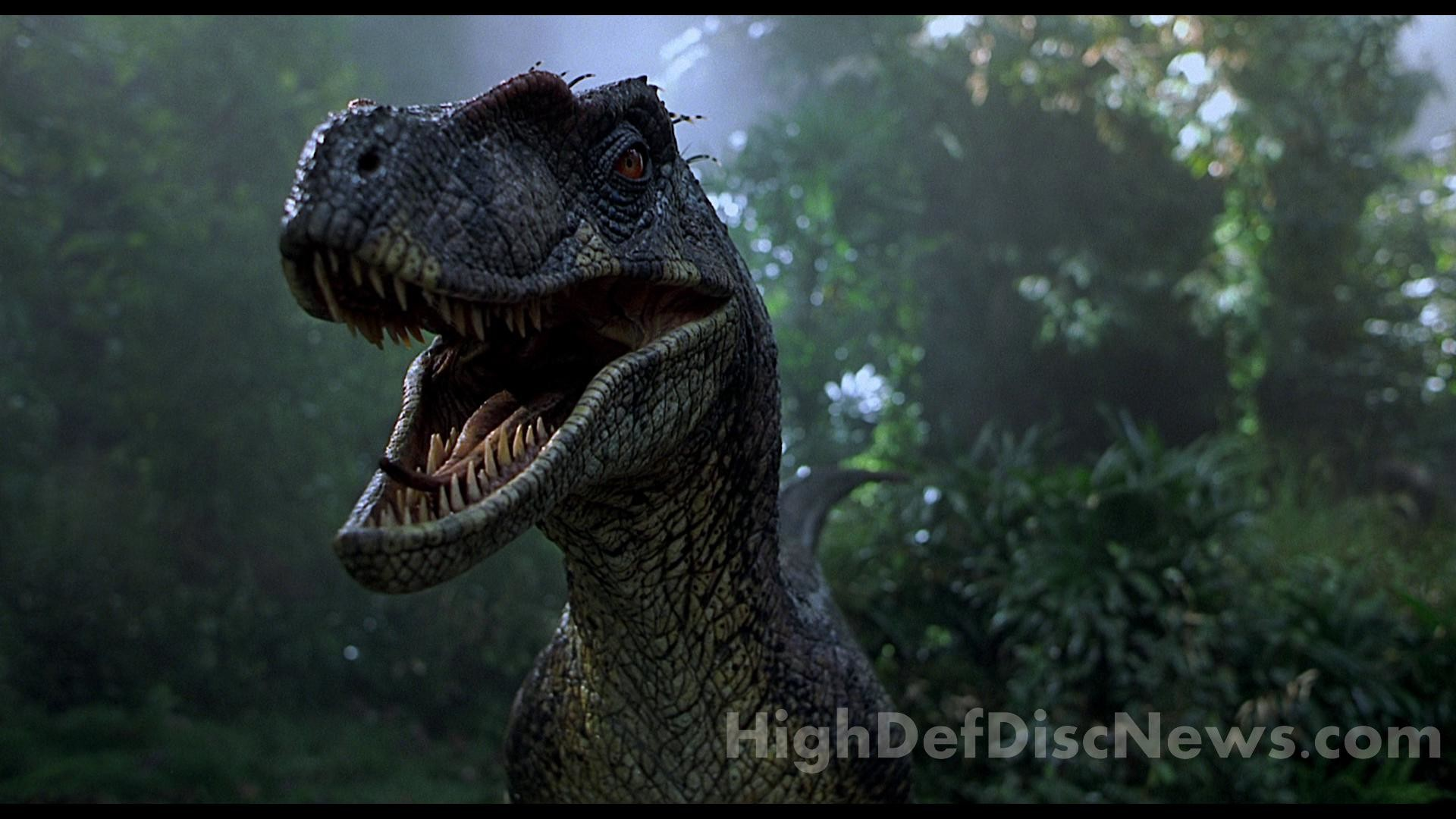 1920x1200 Jurassic Park Wallpapers And Stock Photos 1920x1080