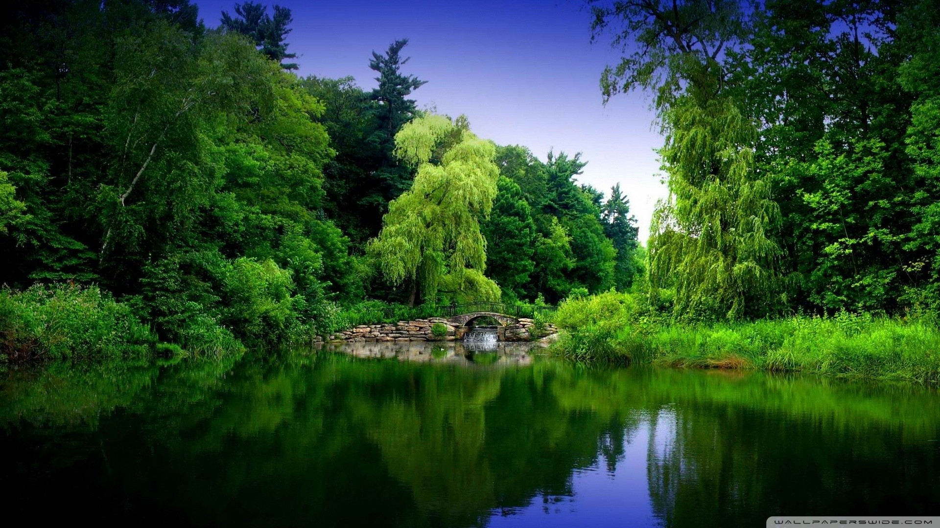 Full hd nature wallpapers 84 background pictures - Green nature wallpaper full hd ...