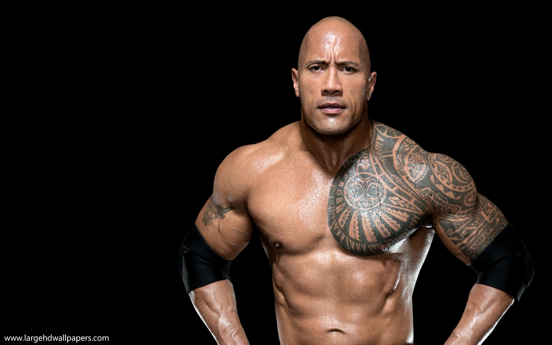 Wallpapers Of Wwe Superstar 68 Background Pictures