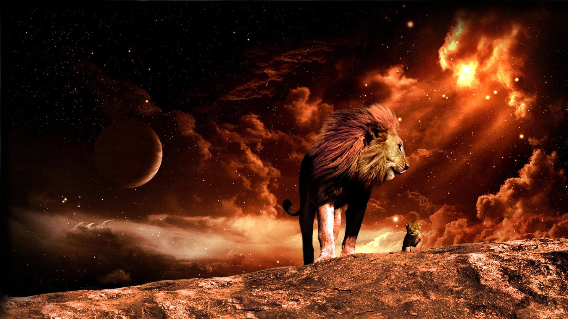 Lion Of Judah Wallpapers 58 Background Pictures