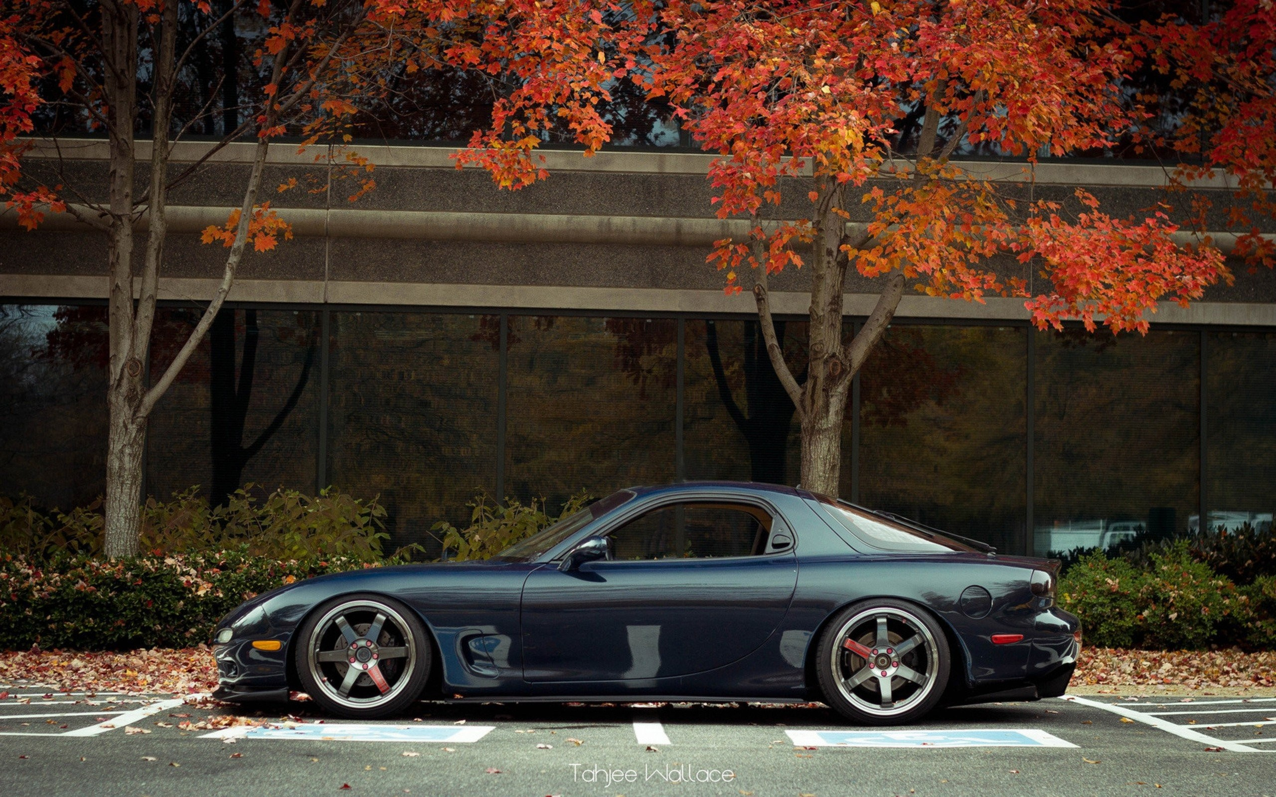 Mazda Rx7 Wallpapers 66 Background Pictures