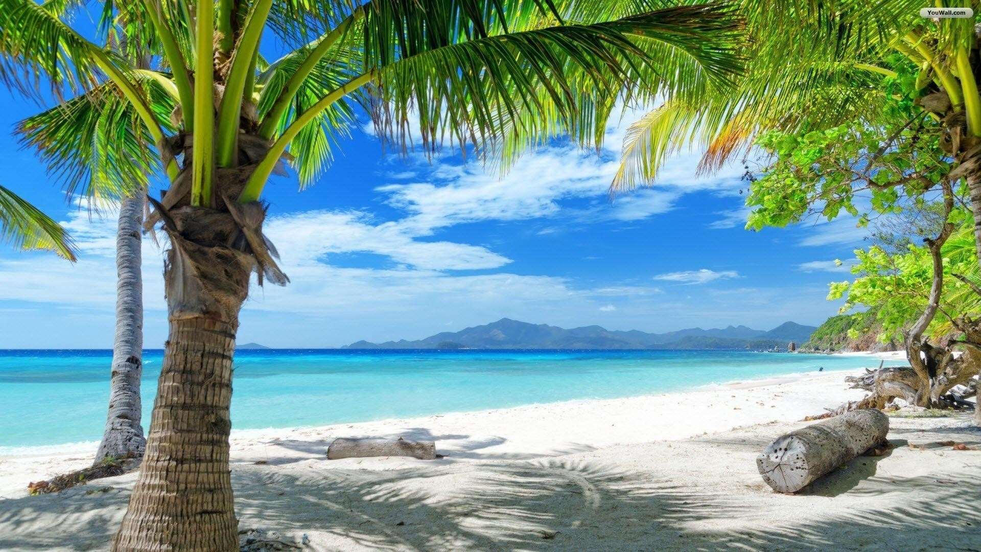 Beach paradise wallpapers 57 background pictures - Paradise pictures backgrounds ...