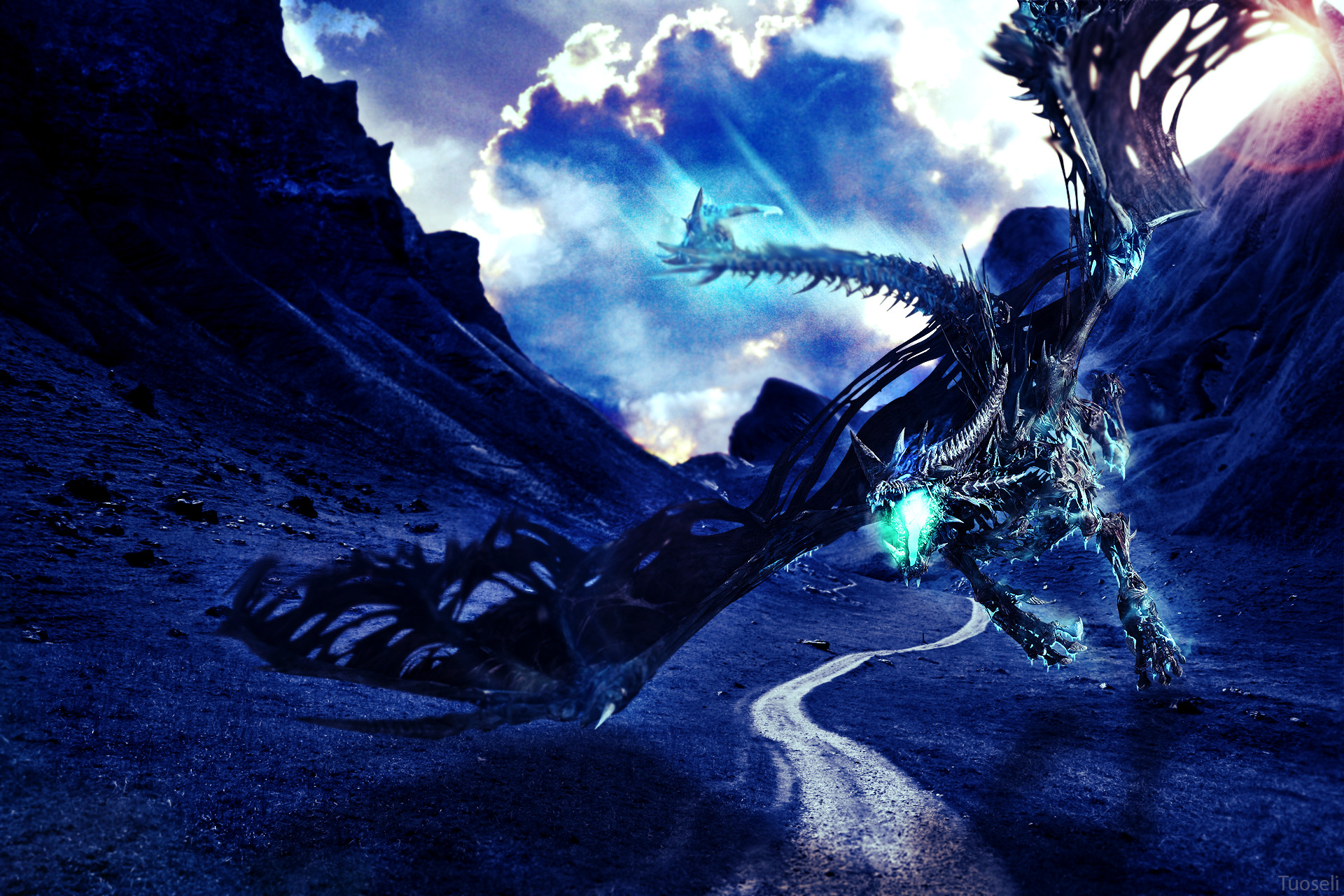 Dragon Wallpapers Hd 88 Background Pictures