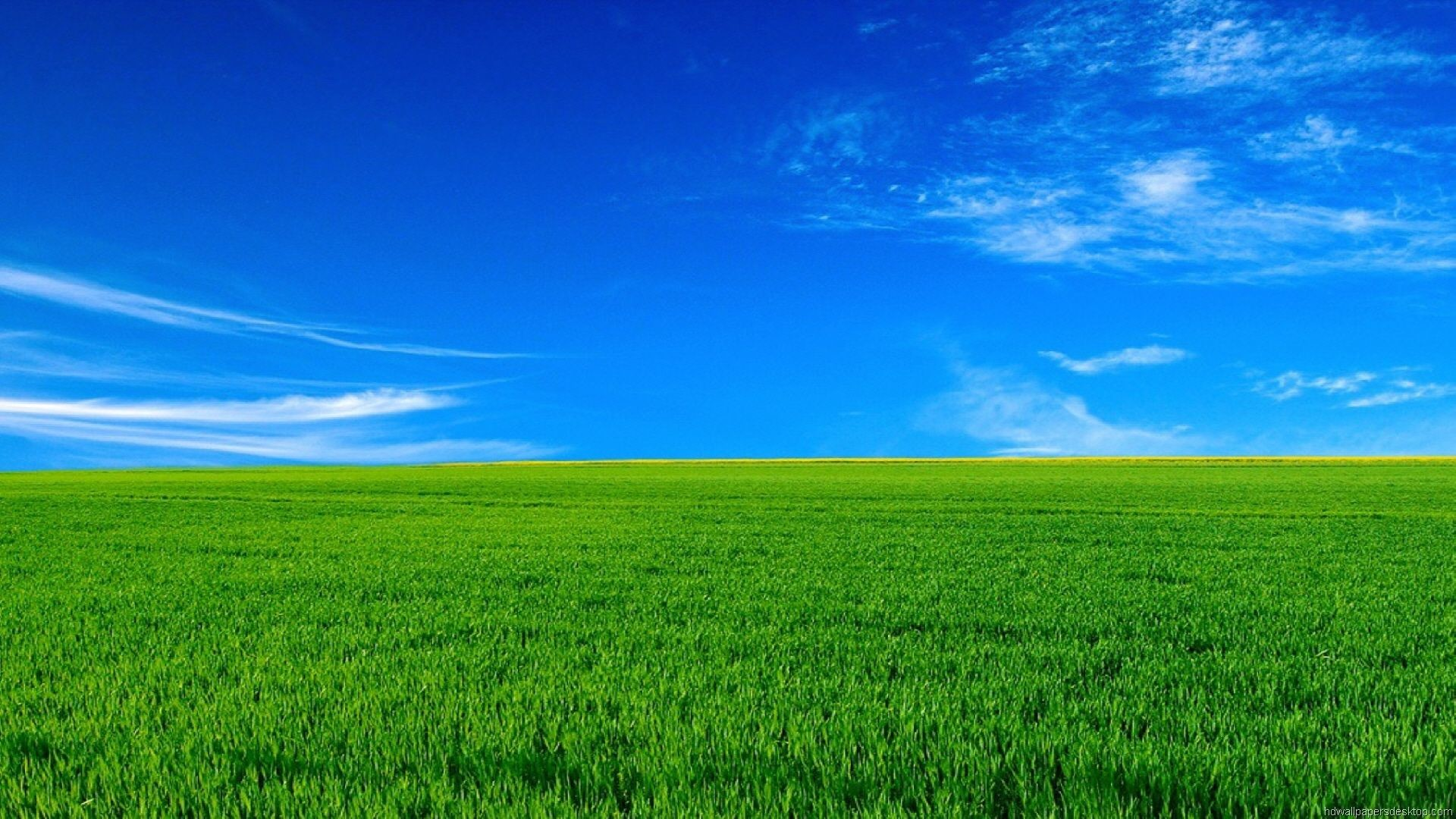 Hd Wallpapers 1080p 79 Background Pictures