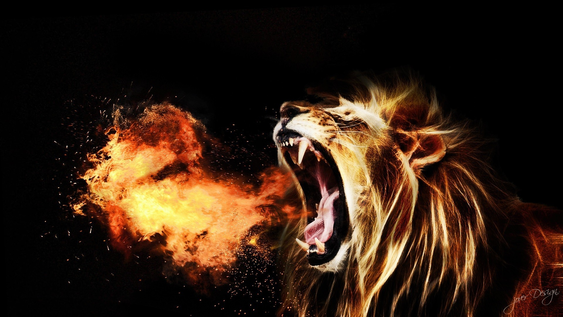 Fire Lion Wallpapers 70 Background Pictures