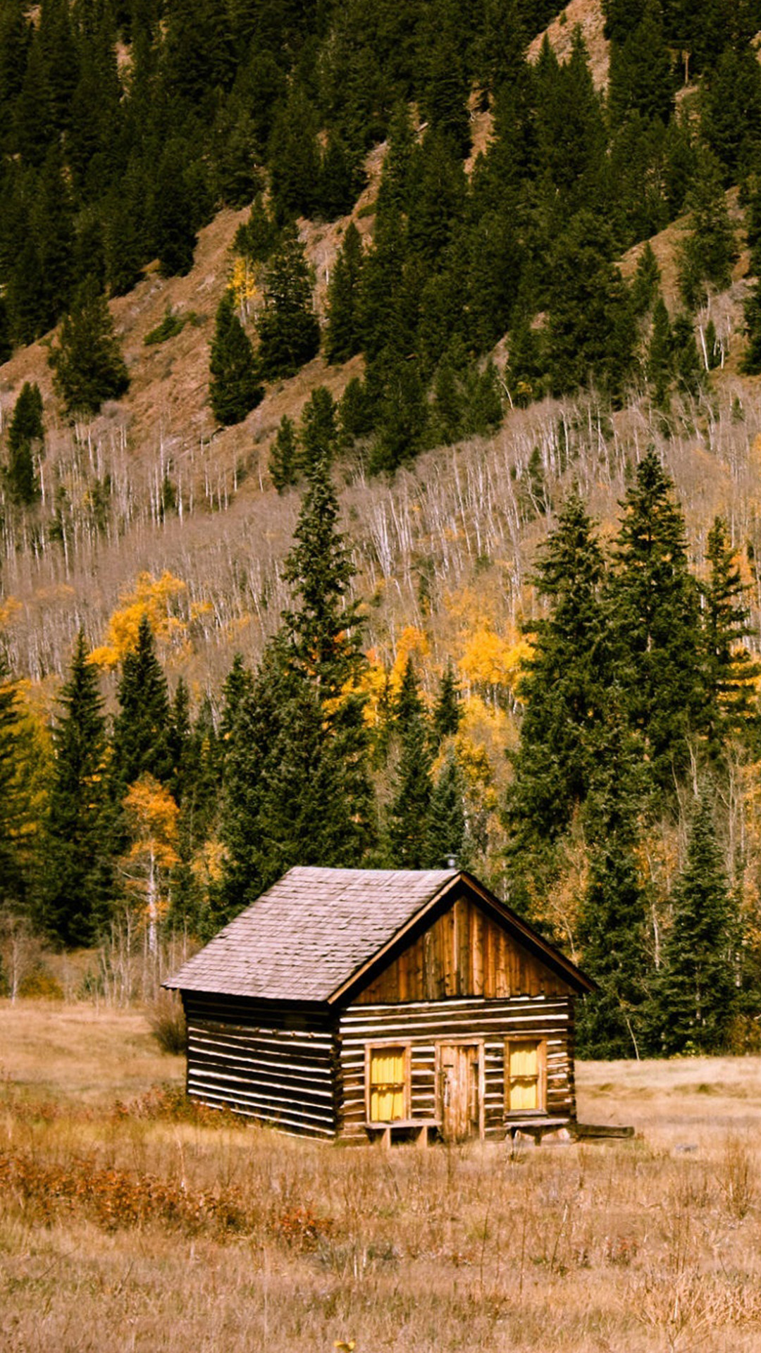 Log Cabin Wallpapers (71+ background pictures)