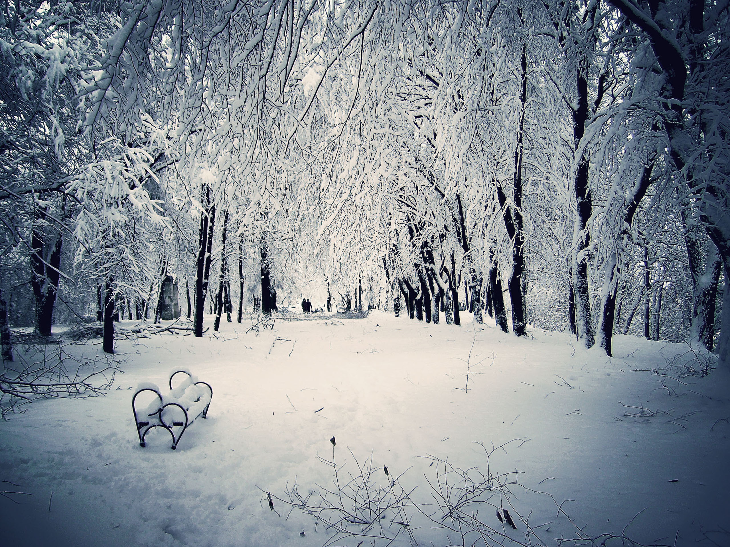 2560x1920 Winter Nature Scenes Wallpapers Group (68+)
