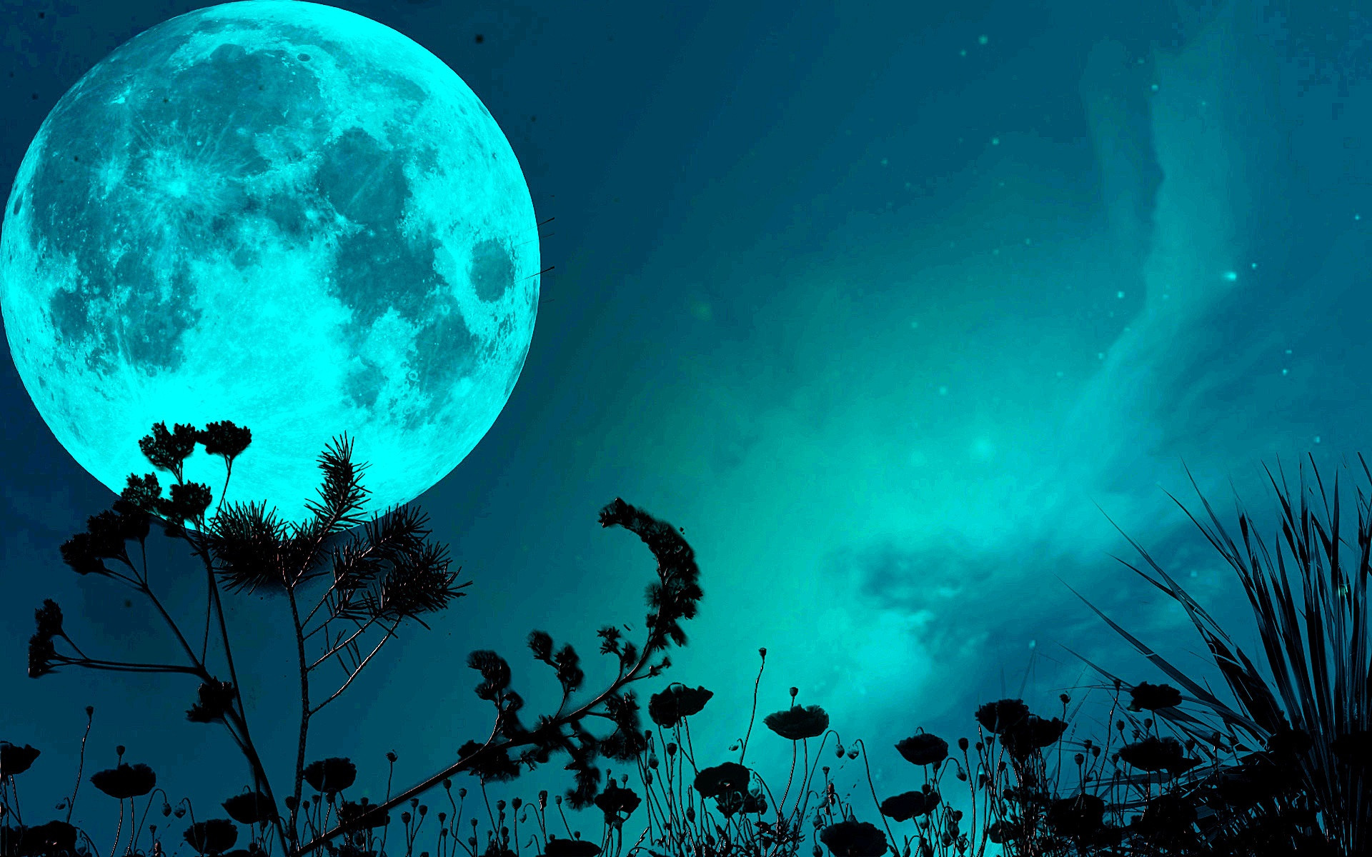 1920x1080 Beautiful Moon Backgrounds HD Wallpapers