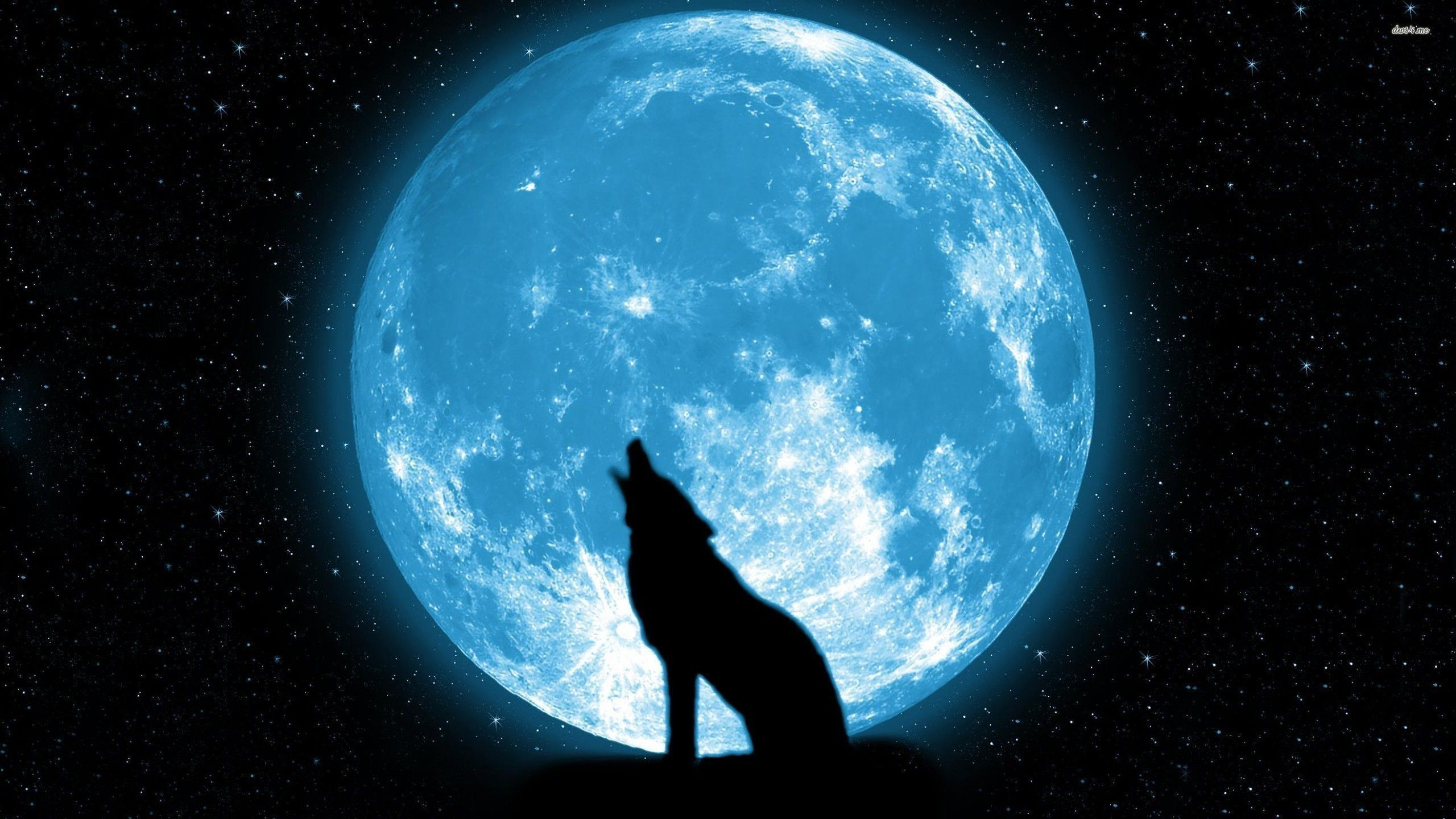 Moon Wallpapers 77 Background Pictures