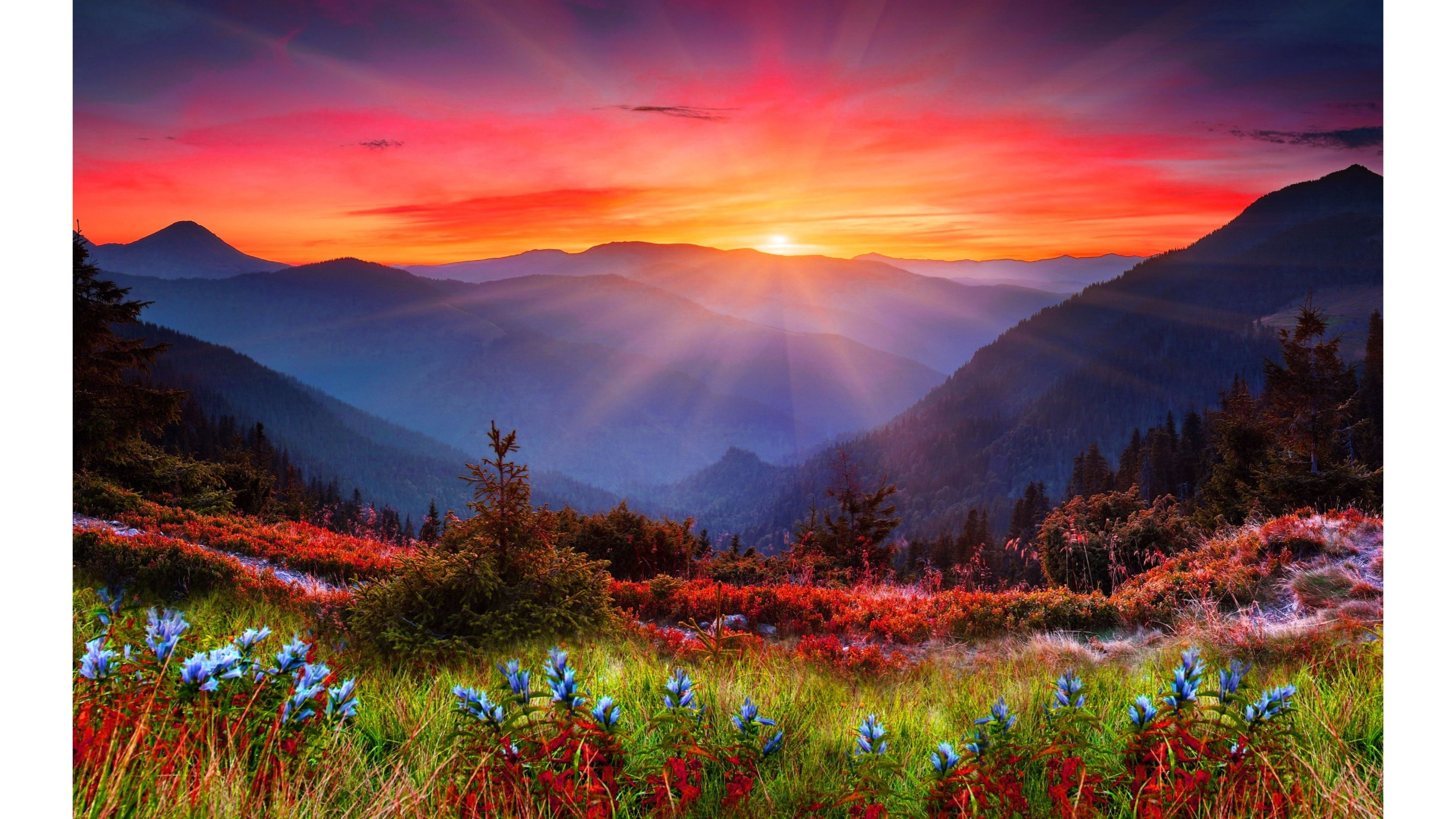 Uhd wallpapers 82 background pictures - 4k colorful wallpaper ...