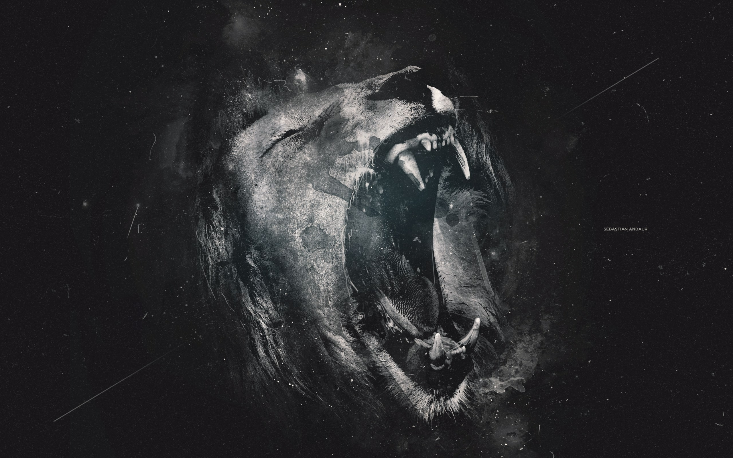 Angry Lion Eyes Wallpapers 56 Background Pictures