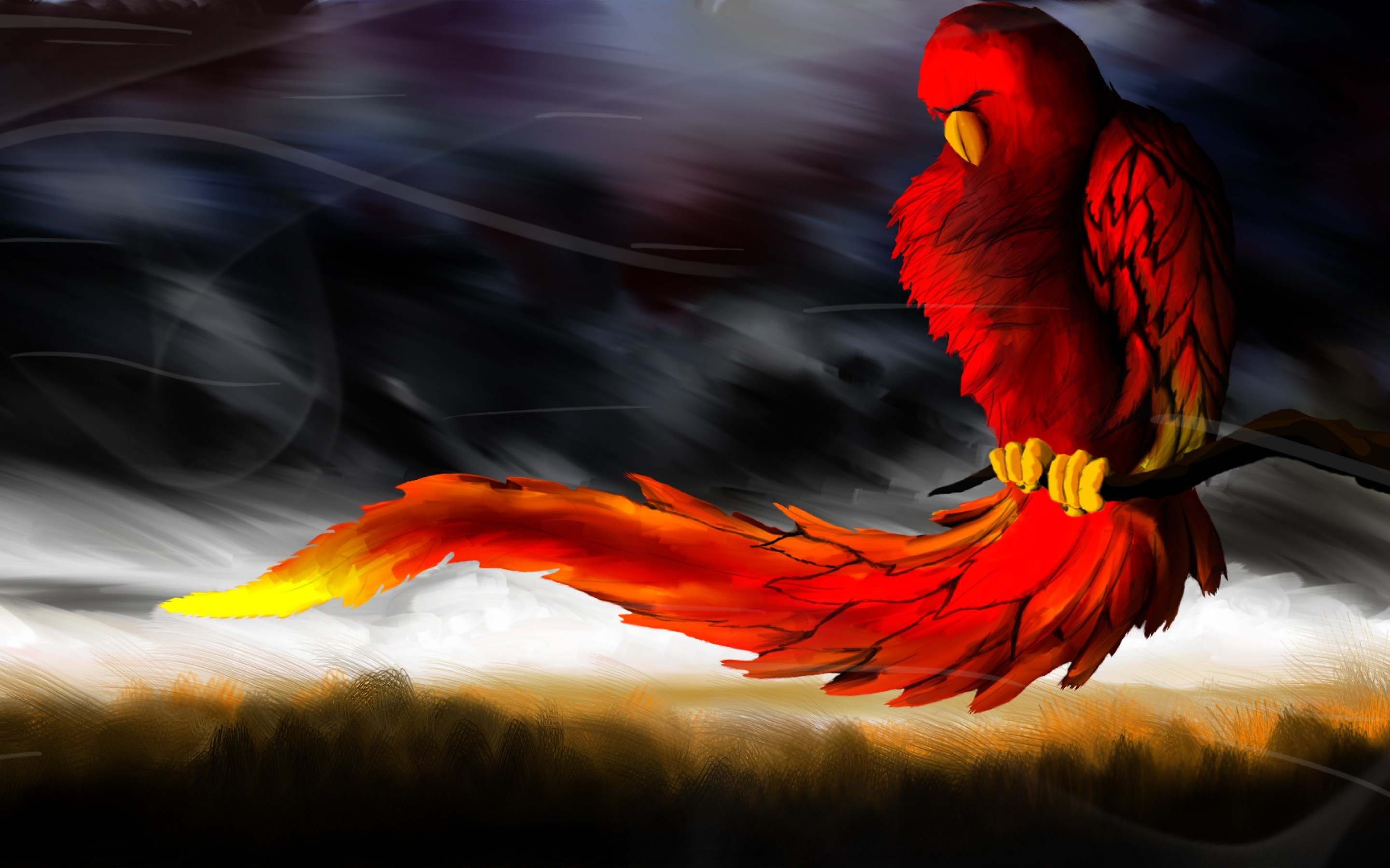 Phoenix Wallpapers 79 Background Pictures