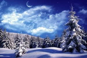 amazing winter scenery wallpapers 1920x1200 pictures