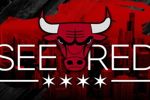 vertical chicago bulls wallpapers hd 2018 2560x1440