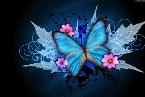 butterfly wallpapers images 1920x1200 for pc