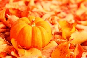 pumpkin desktop wallpapers 2880x1620 for iPad