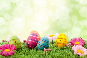 wallpapers for easter 2880x1800 for desktop